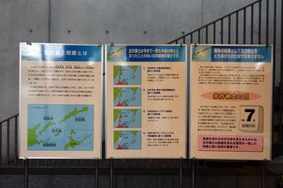 DSC02607ReSize.JPG